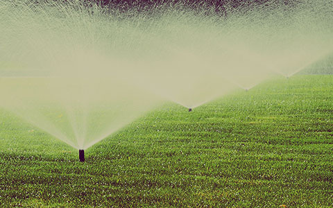 irrigation-design-water-requirements