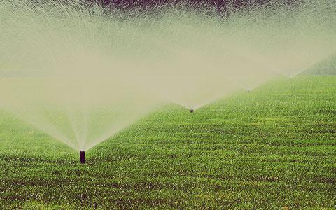 irrigation-design-water-requirements