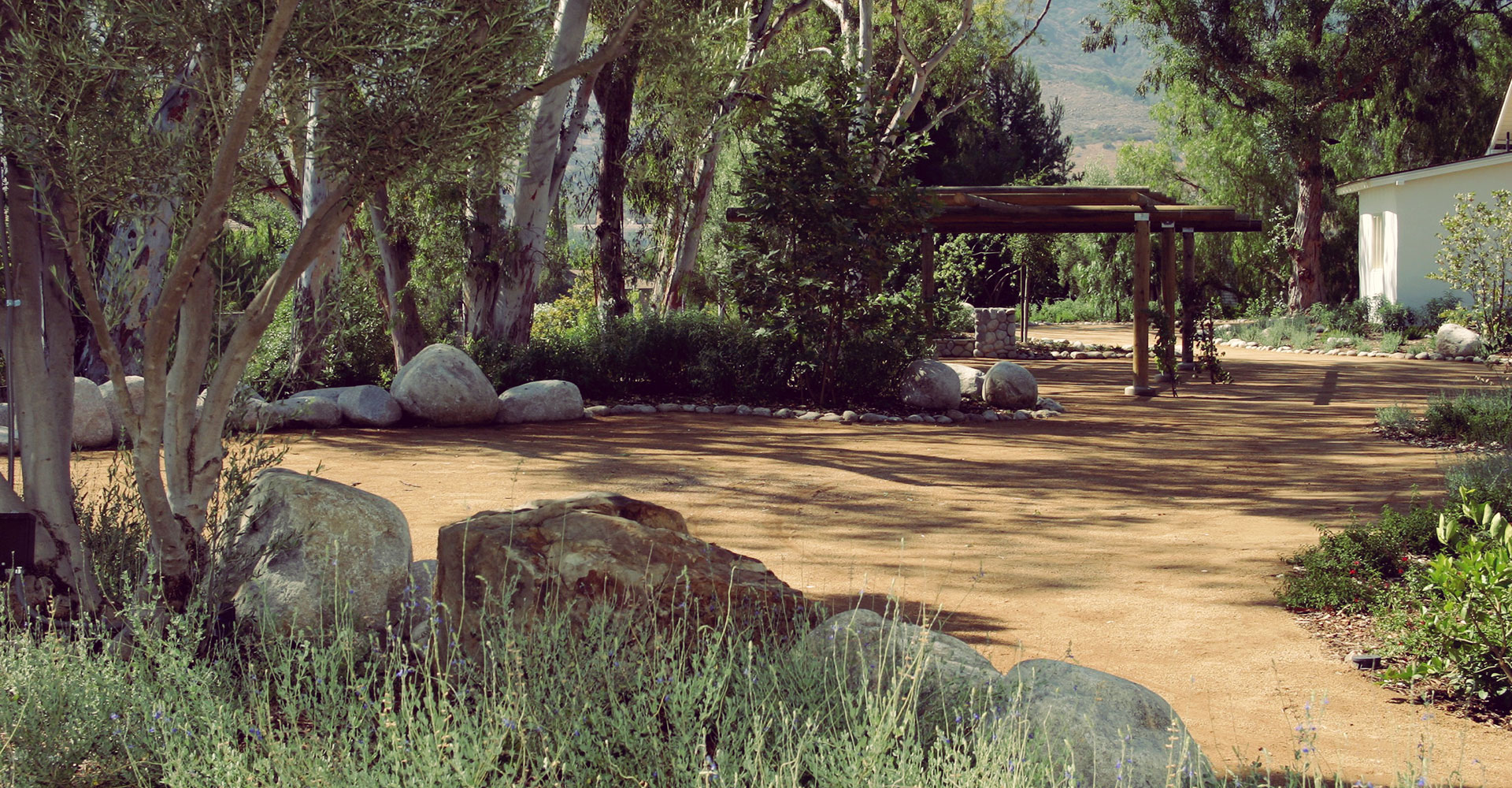Drought Tolerant Landscape Design Ideas
