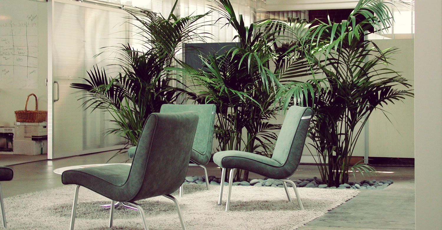 tropical office plants. Indoor Plants Are Maintained Much Different Than Exterior Due To The Unnatural Growing Environment Inside Your Home Or Office Suite. Tropical F