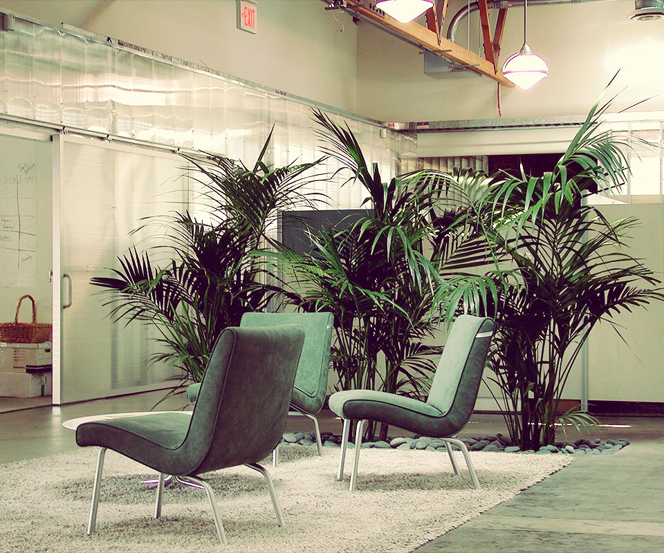 Interior Plant Design Sherman Oaks Landscape Contractors