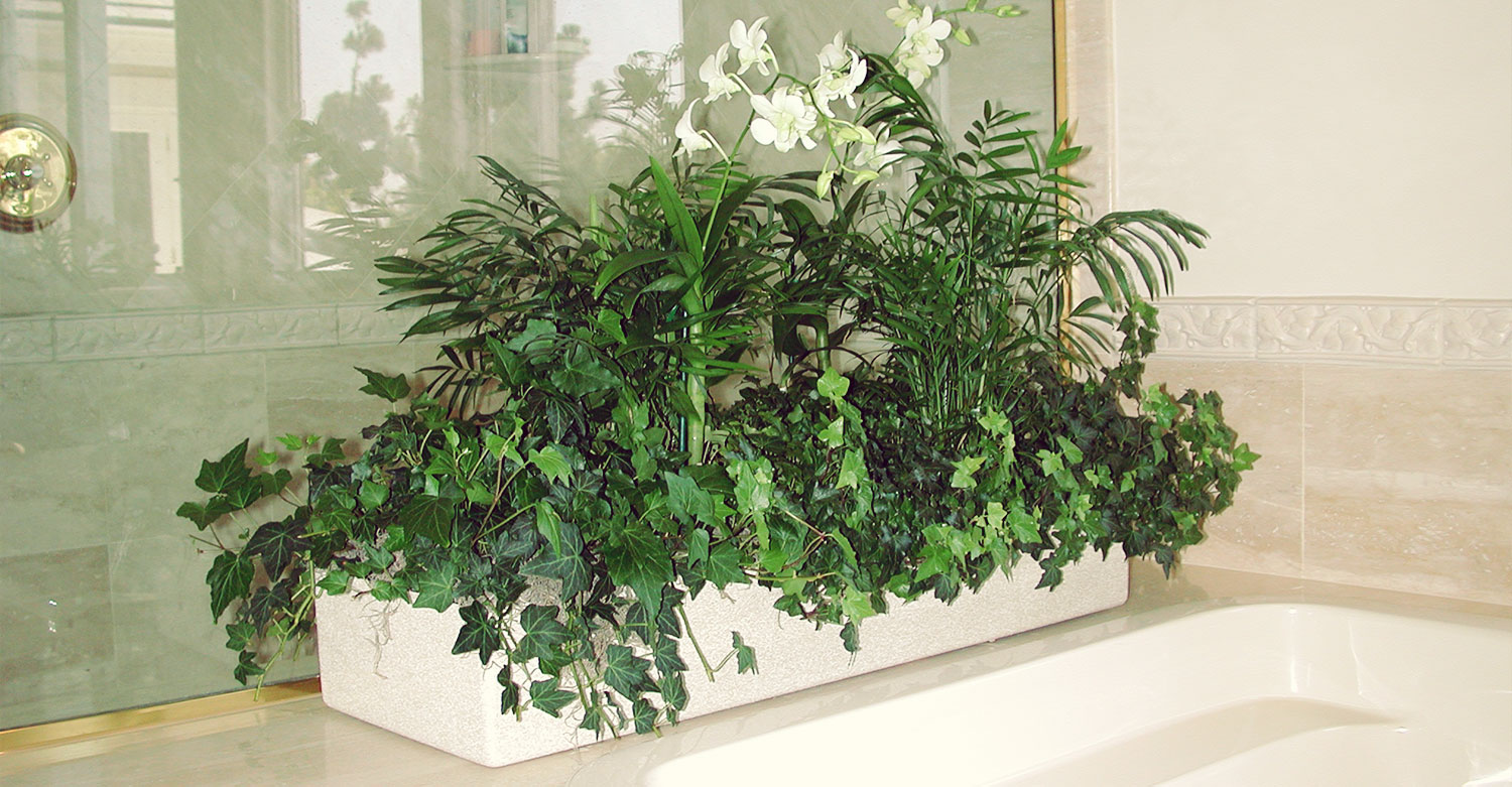 Interior plant design sherman oaks landscape contractors for Interior designs with plants